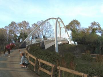 Ipotesi ponte
