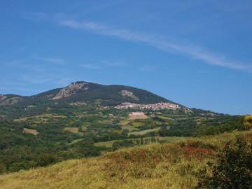Maremmans - Castellazzara - Castell'Azzara Panorama 2