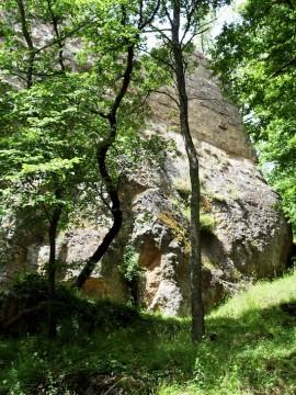 Castello di Vitozza (GR)